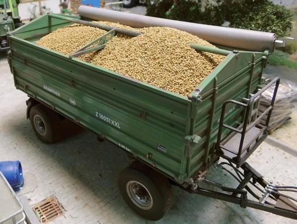 Getreidekörner einzeln 150 g Modell von Juweela 1:32