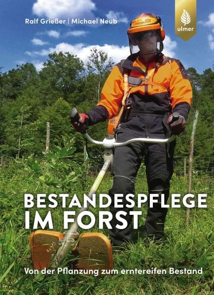 Bestandspflege im Forst